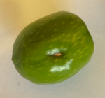 olive-manzanillo-fruit-3